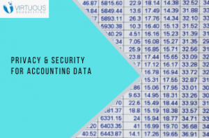 Security and Privacy for Accounting Data